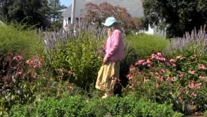 Flower Garden Stroll, Ipswich, MA, ICAM
